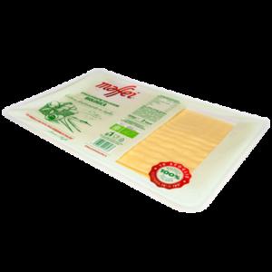 LasagnaBio-cuscino